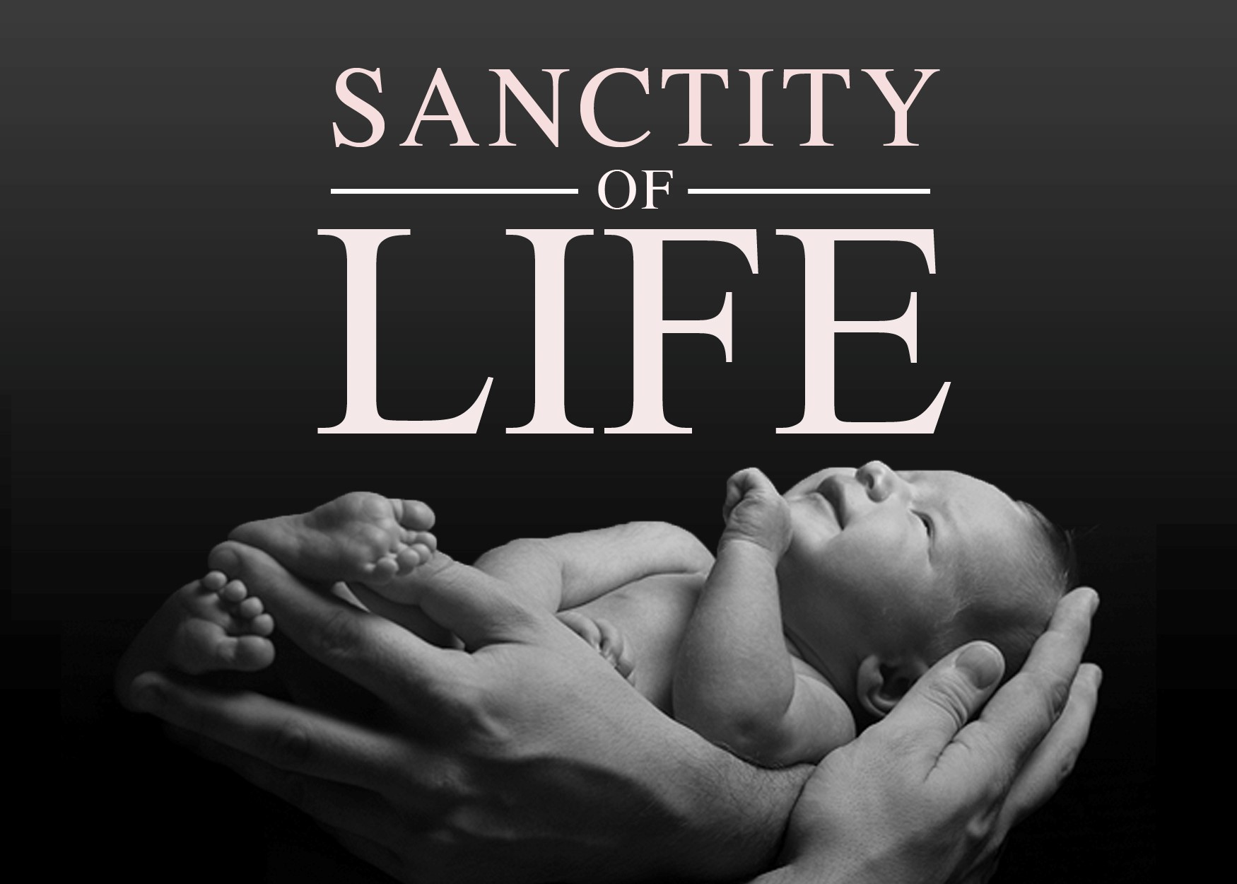 birt the value of the sanctity of life City of philadelphia department of revenue (birt) and the 2015 net the numerator of which is the average value of the taxpayer's real and.
